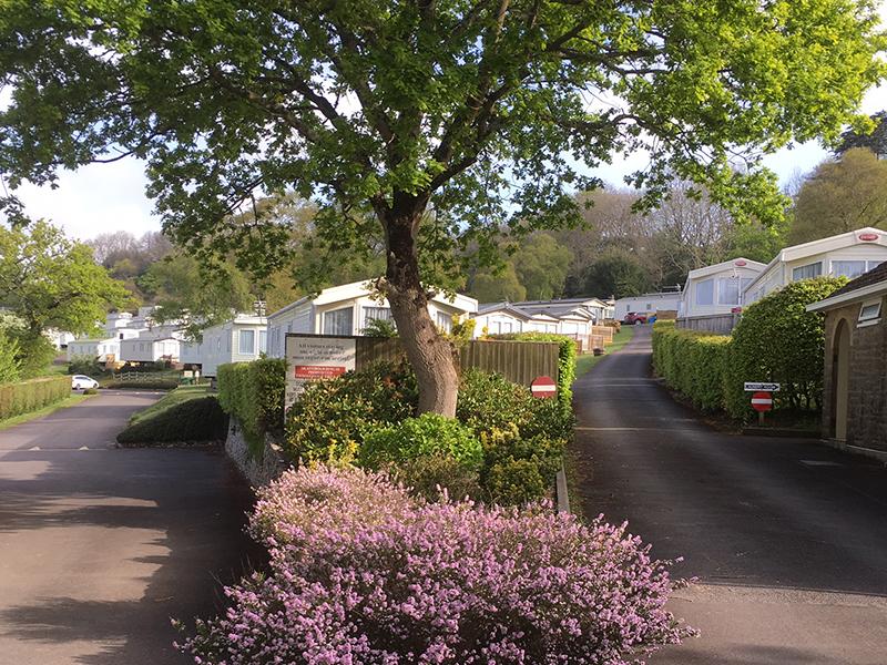 Timber Vale, Slider Image, Lyme Regis, Caravan Park, Campsite, Dorset, Jurassic Coast, Dorset Campsite 4